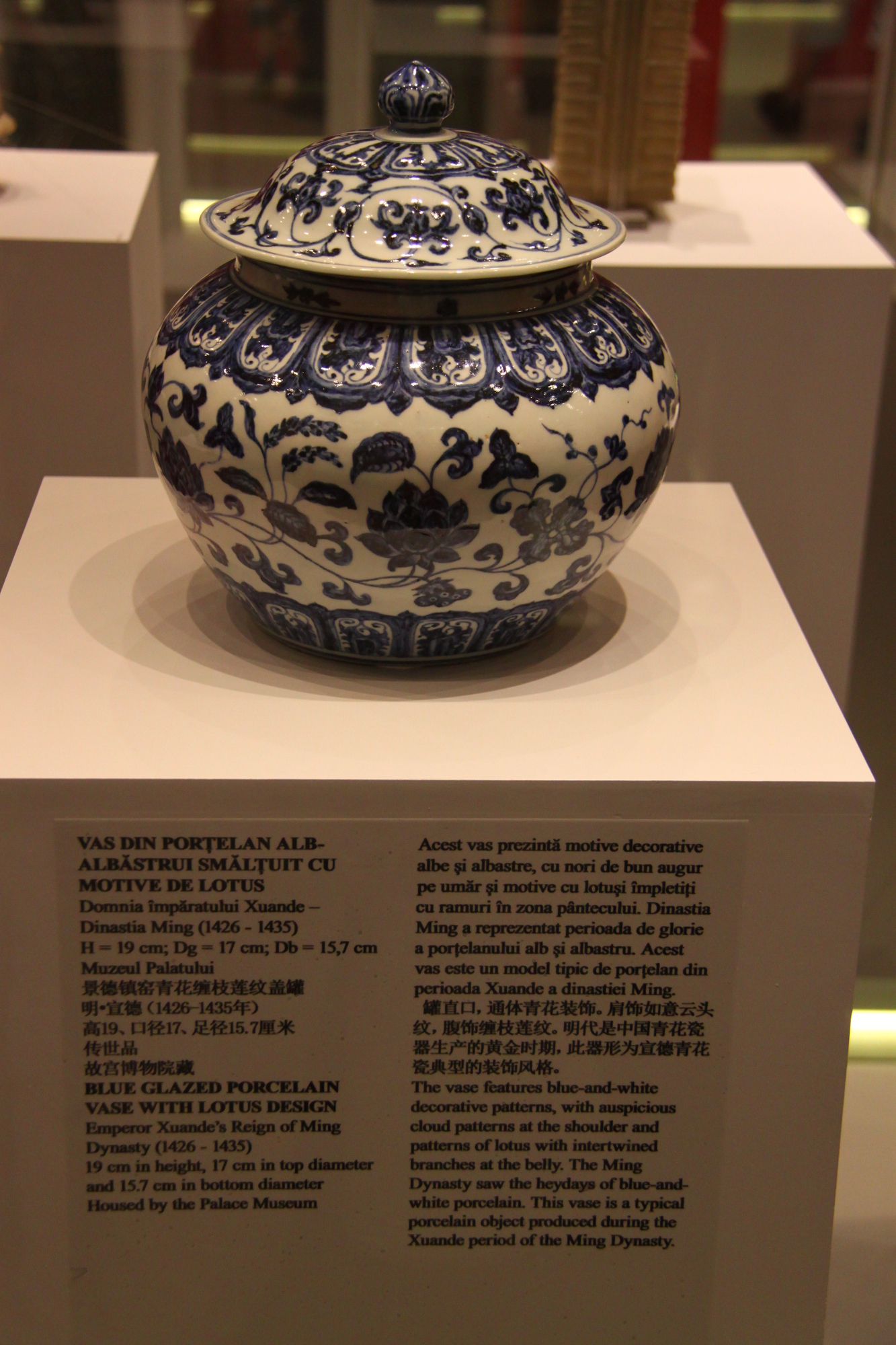 Blue Glazed Porcelain Vase from Ming Dynasty