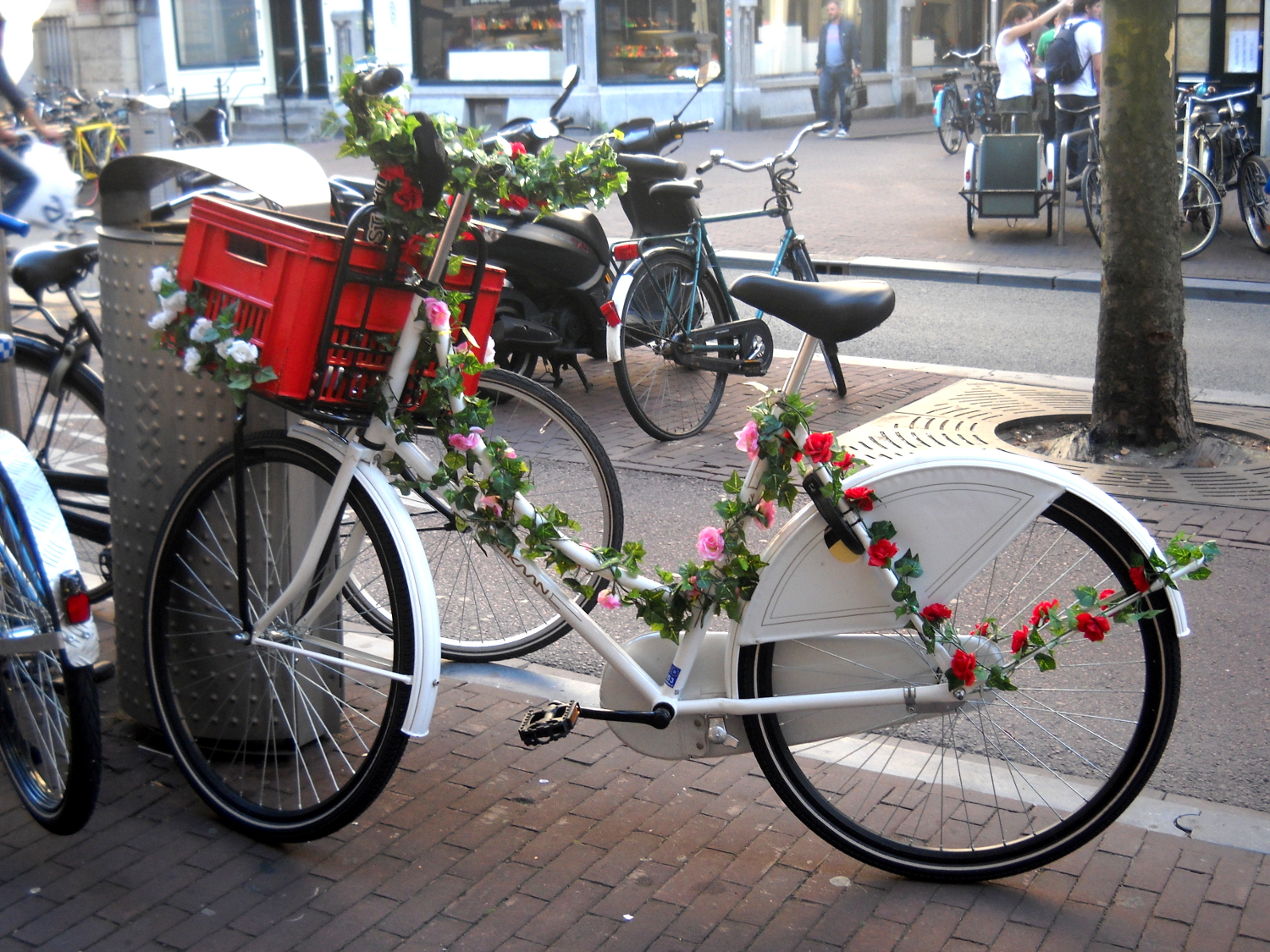 Beautiful Bicycles with flowers in Amsterdam
