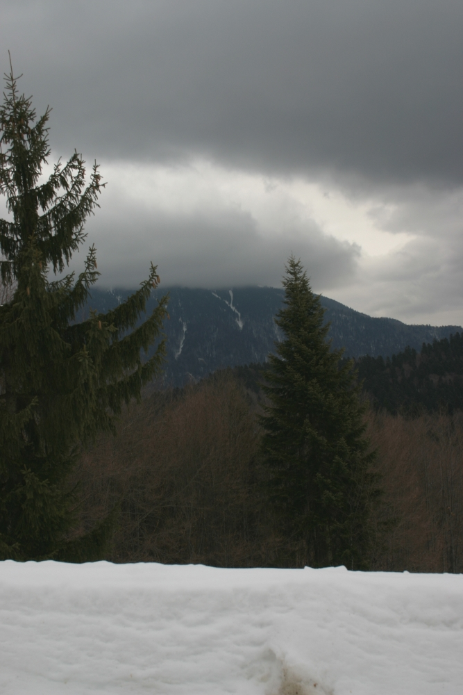 Snowy landscape from Predeal