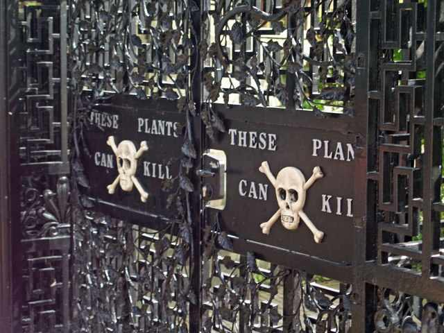 The Poison Garden, Alnwick Castle, UK