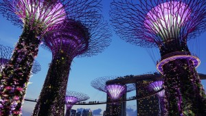 A guide to #Singapore - Garden by the Bay at night
