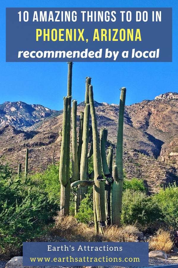10 Amazing things to do in Phoenix Arizona you can't afford to miss! The local's travel guide to Phoenix, Arizona! #arizona #usa #phoenix #travel