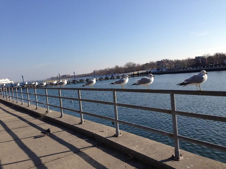 the Emmons Avenue (Sheepshead Bay) is one of the best off the beaten path things to see in Brooklyn. This article includes the tp things to do in Brooklyn, Brooklyn tips, and where to eat in Brooklyn. #Brooklyn #brooklyn guide #brooklyntips #brooklynny #brooklyntravel