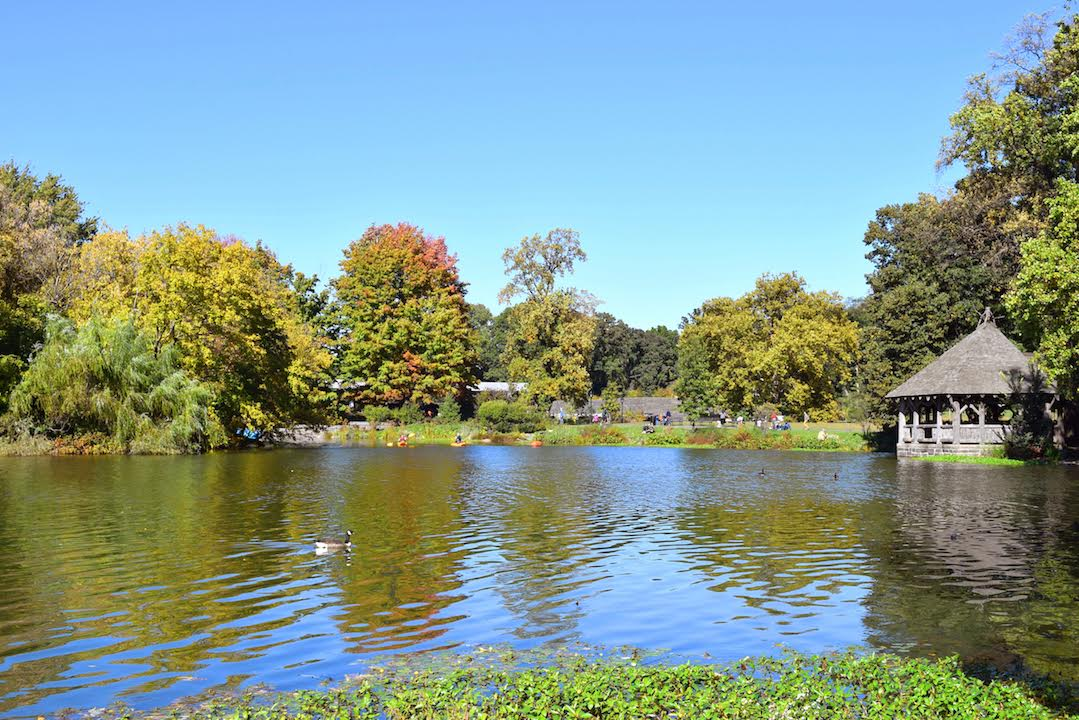Prospect Park, Brooklyn. Read this local's guide to Brooklyn and learn the discover the places to visit in Brooklyn, where to eat in Brooklyn, and Brooklyn tips from an insider. #Brooklyn #brooklyn guide #brooklyntips #brooklynny #brooklyntravel