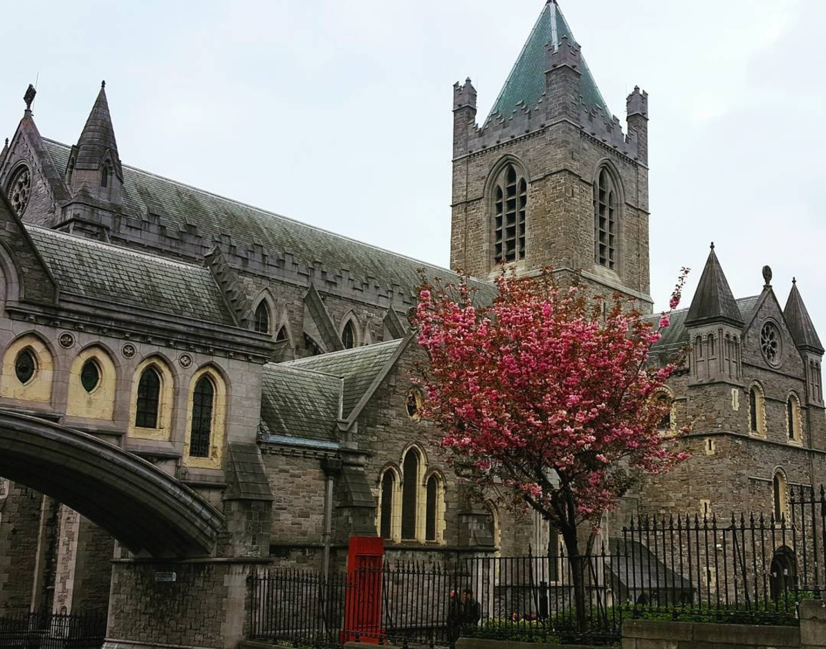 Christchurch Cathedral - - A local's guide to Dublin, Ireland