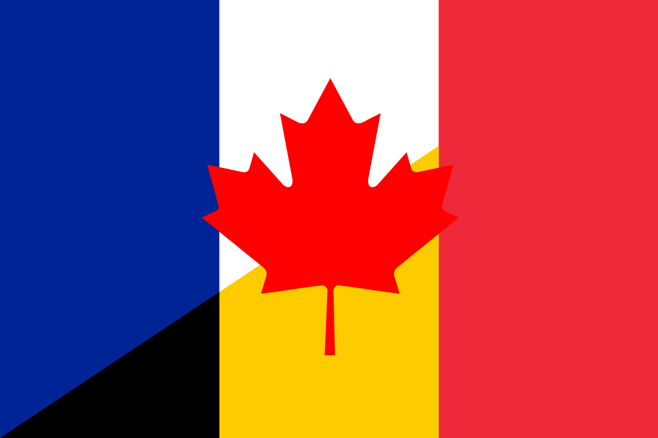 Flag of French language