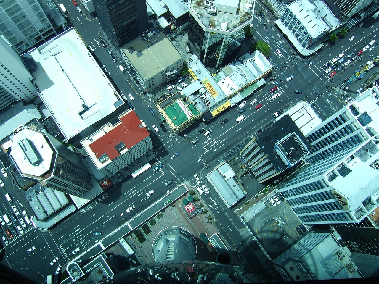 Sky Tower sky walk - A local's travel guide to Auckland, New Zealand