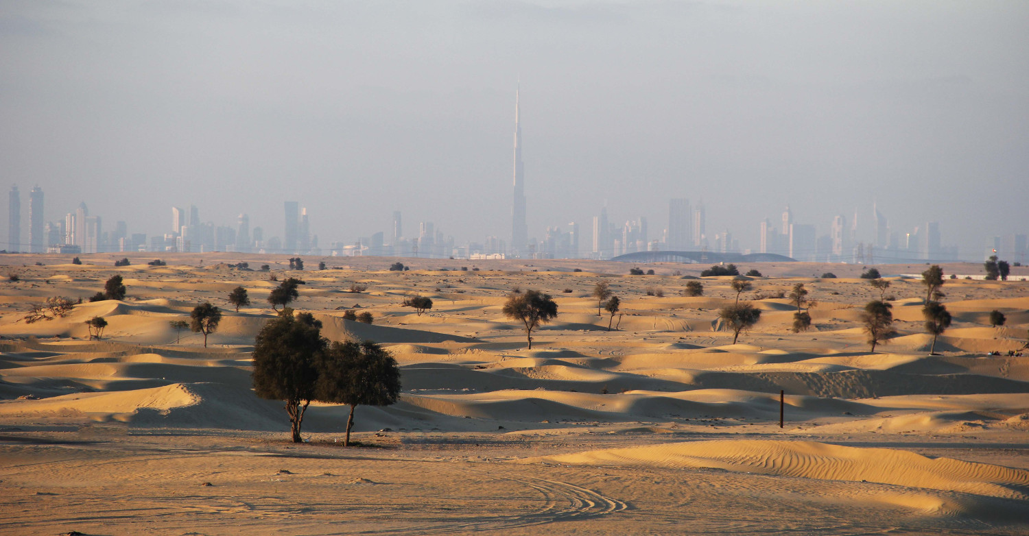 Dubai skyline from the desert