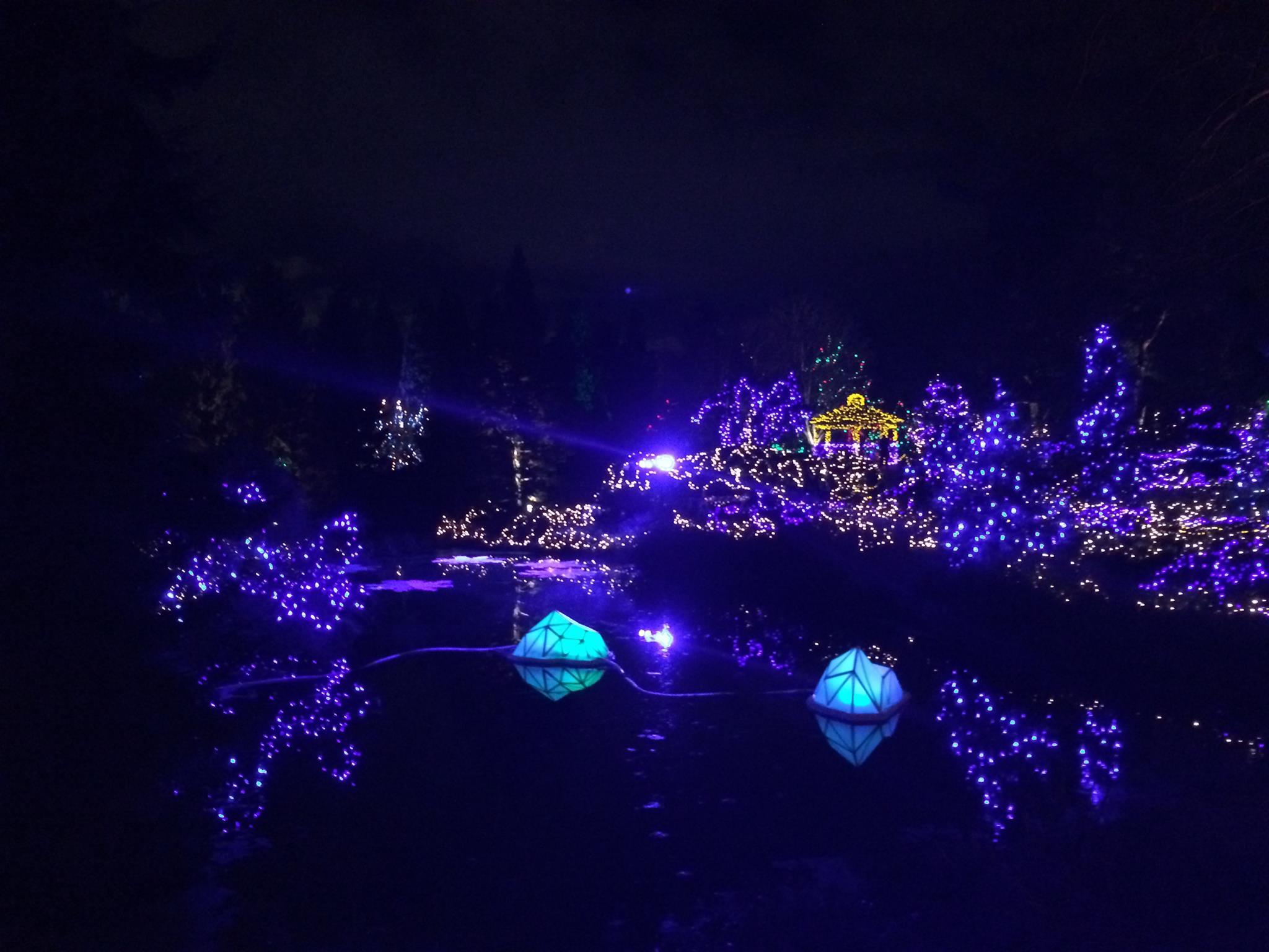 VanDusen Botanical Garden - Christmas