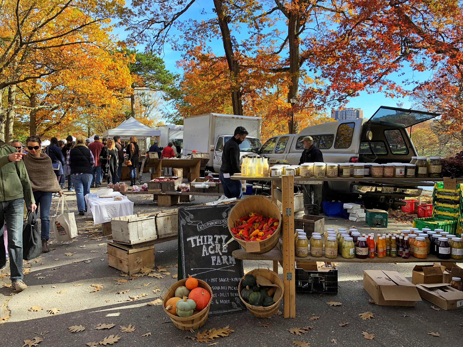 Farmers Market in Deering