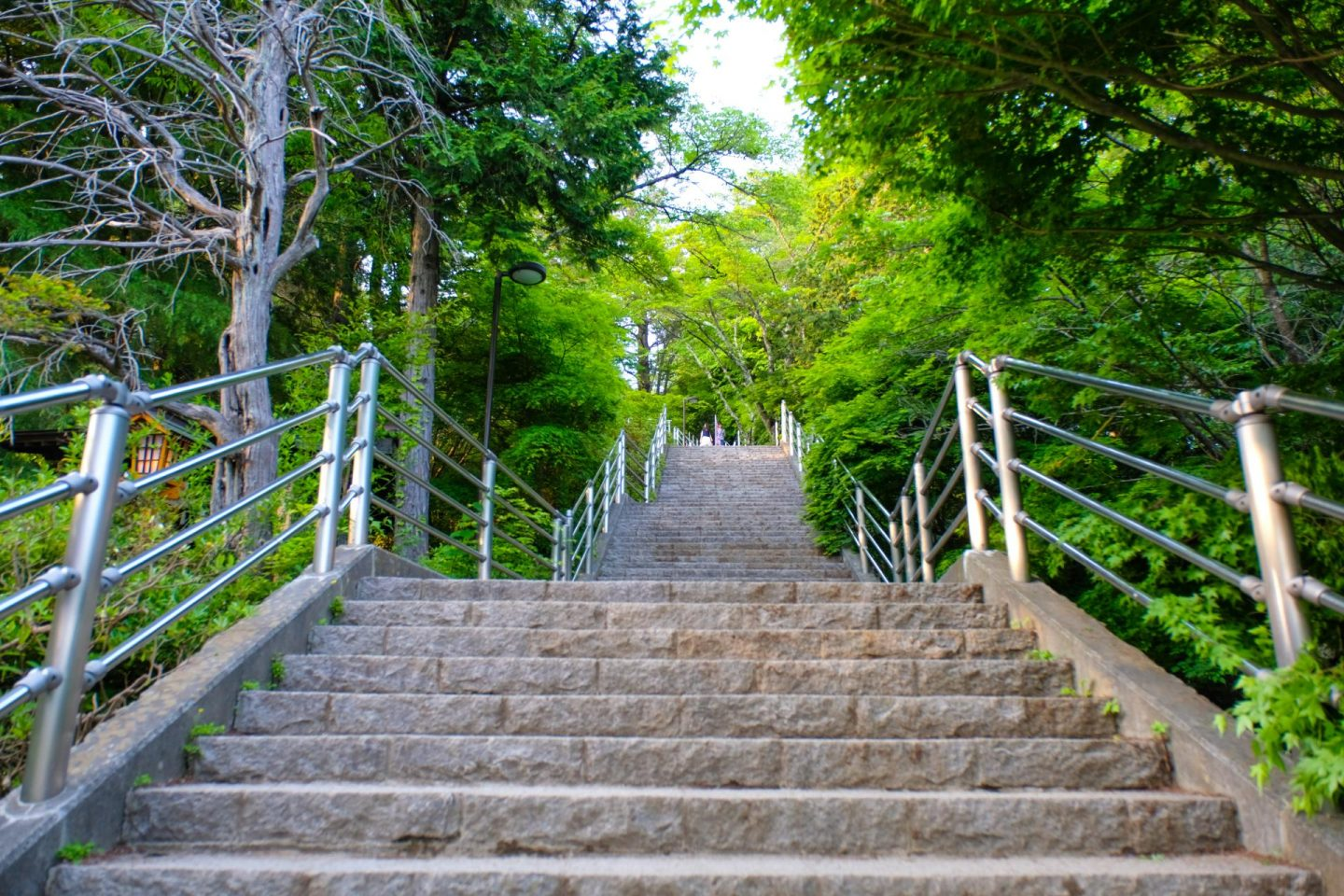 steps - Arakura Sengen Shrine
