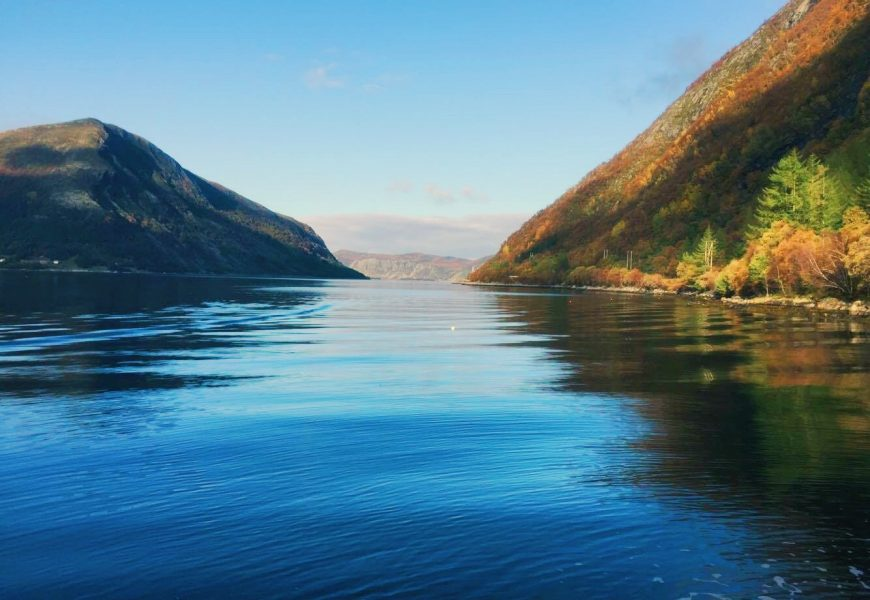 A local's guide to Selje, Norway