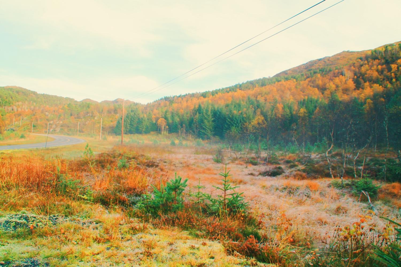 View from Risnakken