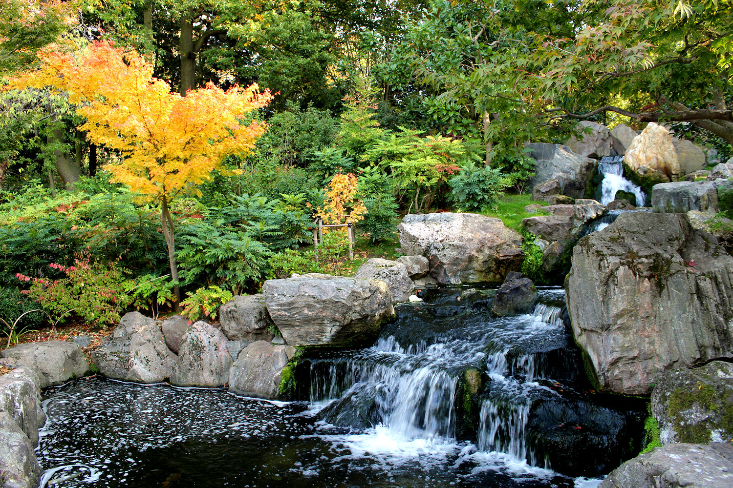 Holland Park - Kyoto Garden - The local's guide to London
