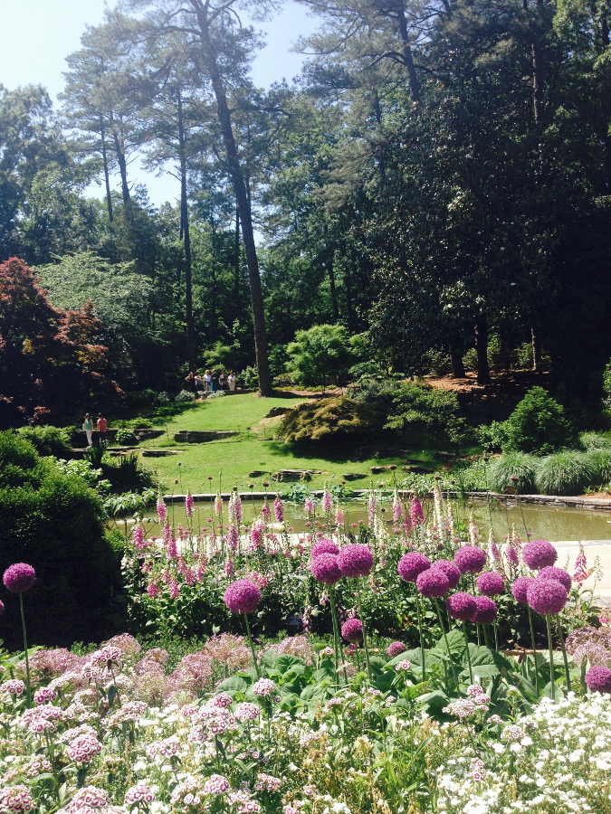 Duke Gardens Durham. Read this local's complete guide to Durham, NC, USA and discover the top 11 things to do, accommodation in Durham North Carolina, food in Durham, tips for Durham. #Durham #Durhamtravel #Durhamusa #durhamtips #durhamguide #durhamtravelguide