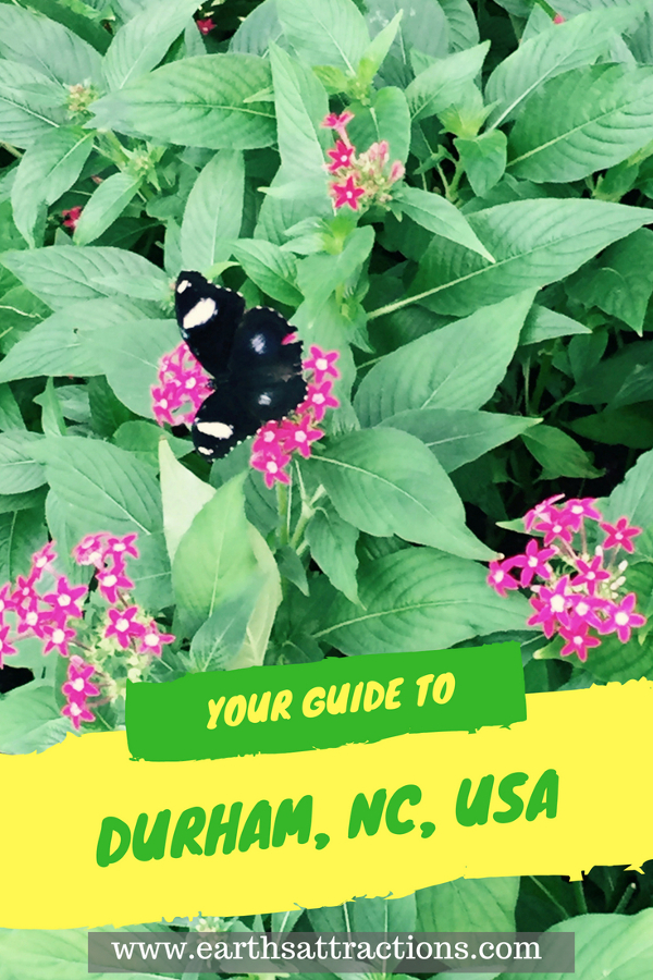 Going to Durham, USA? Read this local's complete guide to Durham, NC, USA and discover the top 11 things to do, accommodation in Durham North Carolina, food in Durham, tips for Durham. Save this pin to your board #Durham #Durhamtravel #Durhamusa #durhamtips #durhamguide #durhamtravelguide