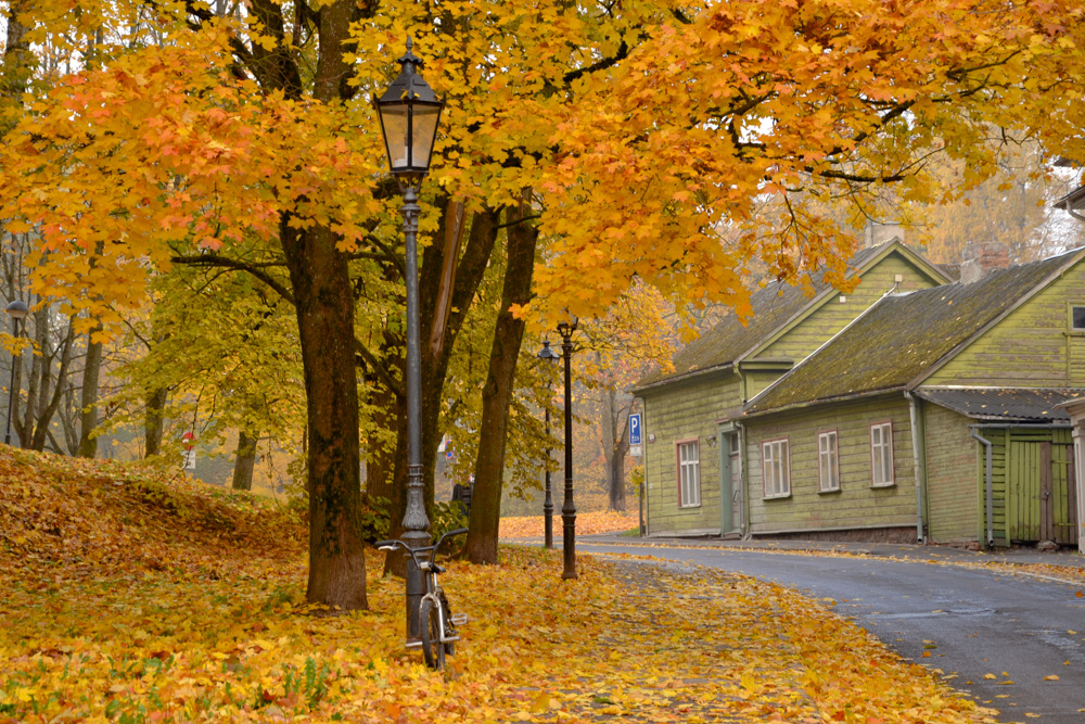 Estonia is one of the best countries to visit in autumn in Europe. Read this article and discover the best holiday destinations in October in Europe and where to see the most beautiful fall colors in Europe. #Europe #fall #fallfoliage #foliage #europefoliage #fallcolors #fallcolours #colours#autumn #estonia