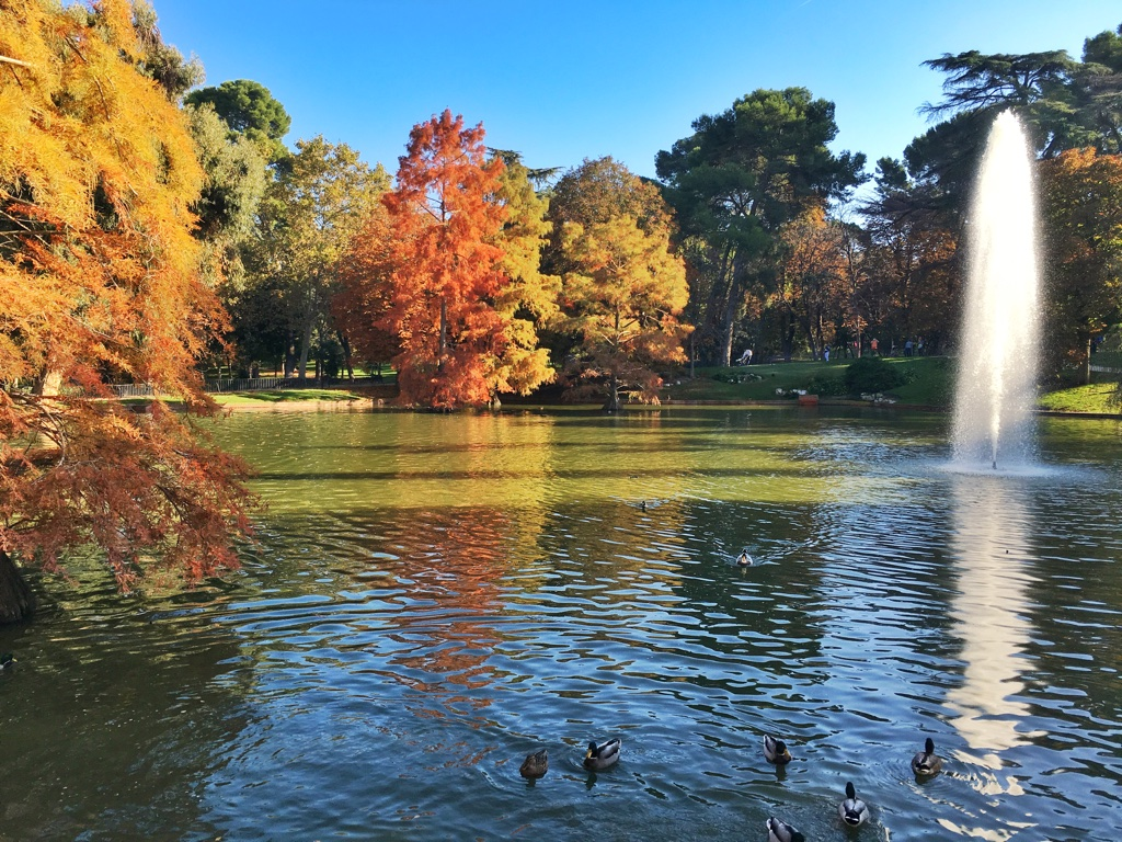 Madrid, Spain is one of the top cities to visit in Europe in autumn to see fall foliage in Europe. If you like colorful autumn trees, then read this article and discover where to see the most beautiful fall colors in Europe #Europe #fall #fallfoliage #foliage #europefoliage #fallcolors #fallcolours #colours#autumn #madrid #spain