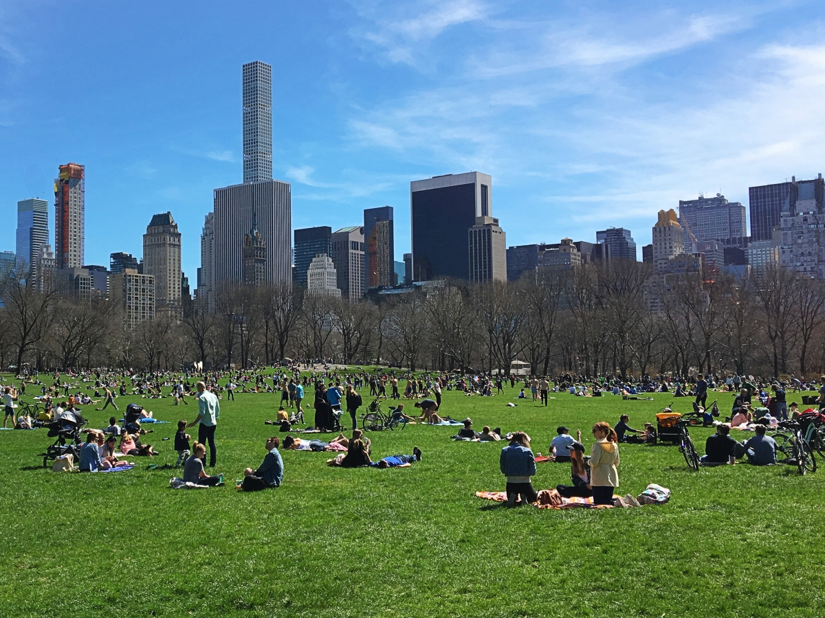 New York City - Central Park, one of the landmarks of the city. Read this perfect NYC 3-day itinerary by a local - it includes the best things to do in New York City in three days. #nyc #usa #newyorkcity #nycguide #nycitinerary #nyctraveling #usatraveling #travelguide