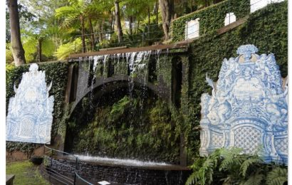 Your Funchal guide: discover what to do in Funchal, Madeira, Portugal