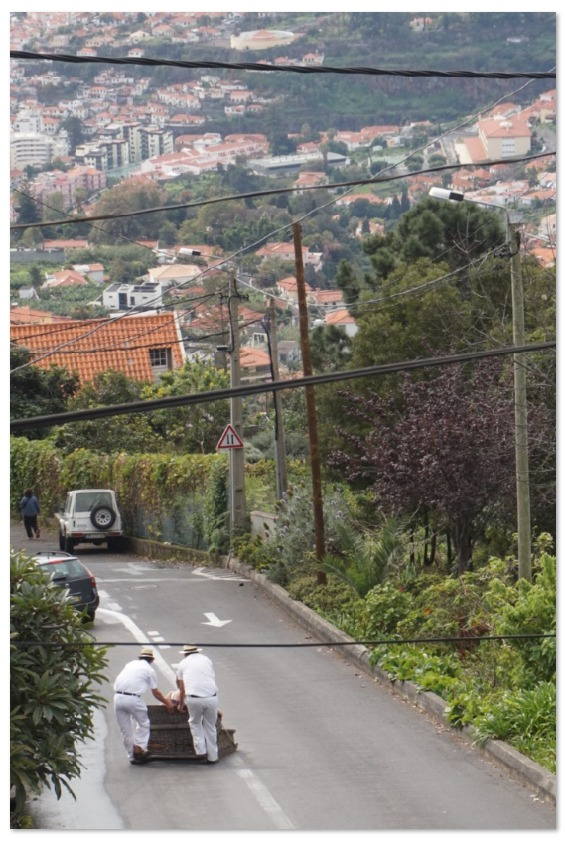 Toboggan ride in Madeira - one of the fun things to do in Funchal. Discover from this travel guide to Funchal the best attractions in Funchal, Funchal food, and Funchal tips. #funchal #funchalguide #funchalmadeiraguide #funchalmadeira #funchalportugal #funchaltravelguide #funchaltraveling #funchaltips #funchalfood