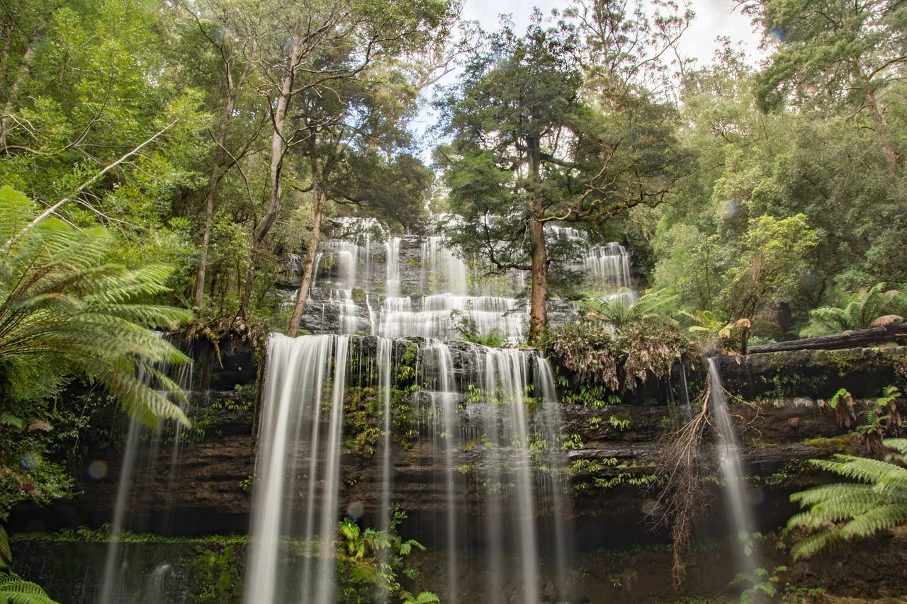 Russell Falls in Mt Field National Park is the most photographed waterfall in the state. Discover the 8 top places to visit in Tasmania from this article. #tasmania #tasmaniawonders #tasmaniaattractions