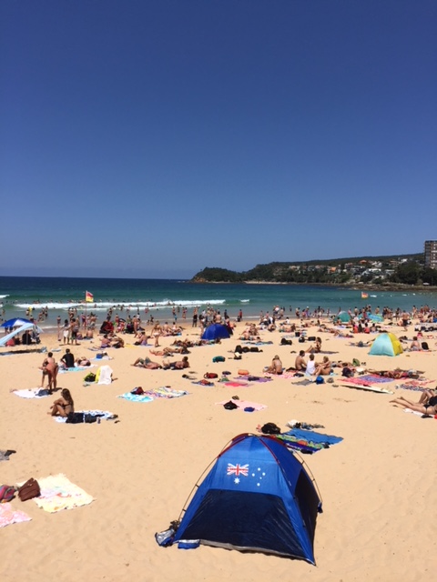 You simply must visit one of the wonderful Sydney Beaches on your trip here. Read this article to discover also the best places to see in Sydney, fun things to do in Sydney, accomodation and food recommendations from a local. #sydney #sydneytrip #sydneyattractions #sydneyaustralia #australiatravel #sydneytravel