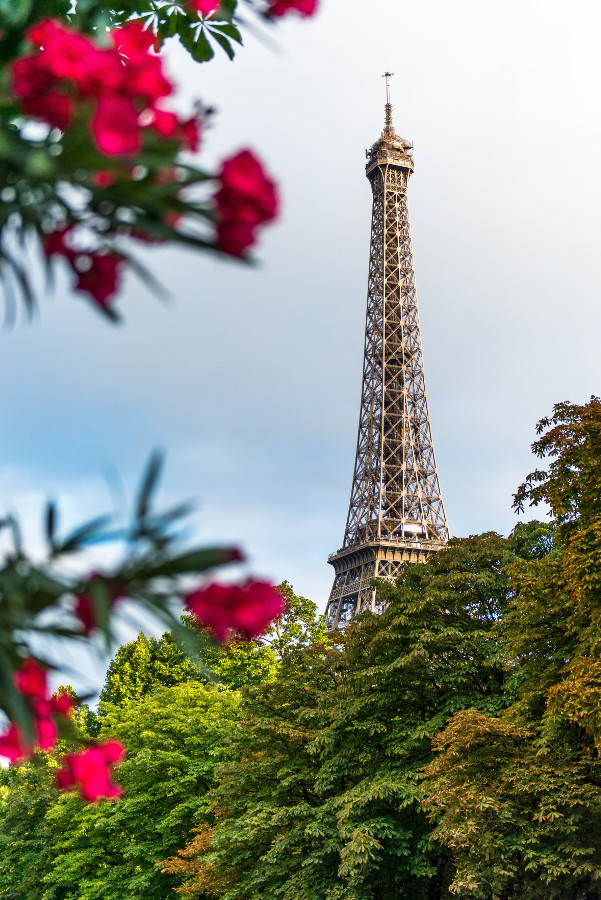The Eiffel Tower has to be on your Paris bucket list. Discover the top experiences in Paris from this article. #paris #parisbucketlist #parislist #parisfrance #france