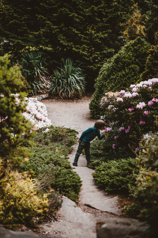 young boy at Exbury Gardens, Southampton, United Kingdom