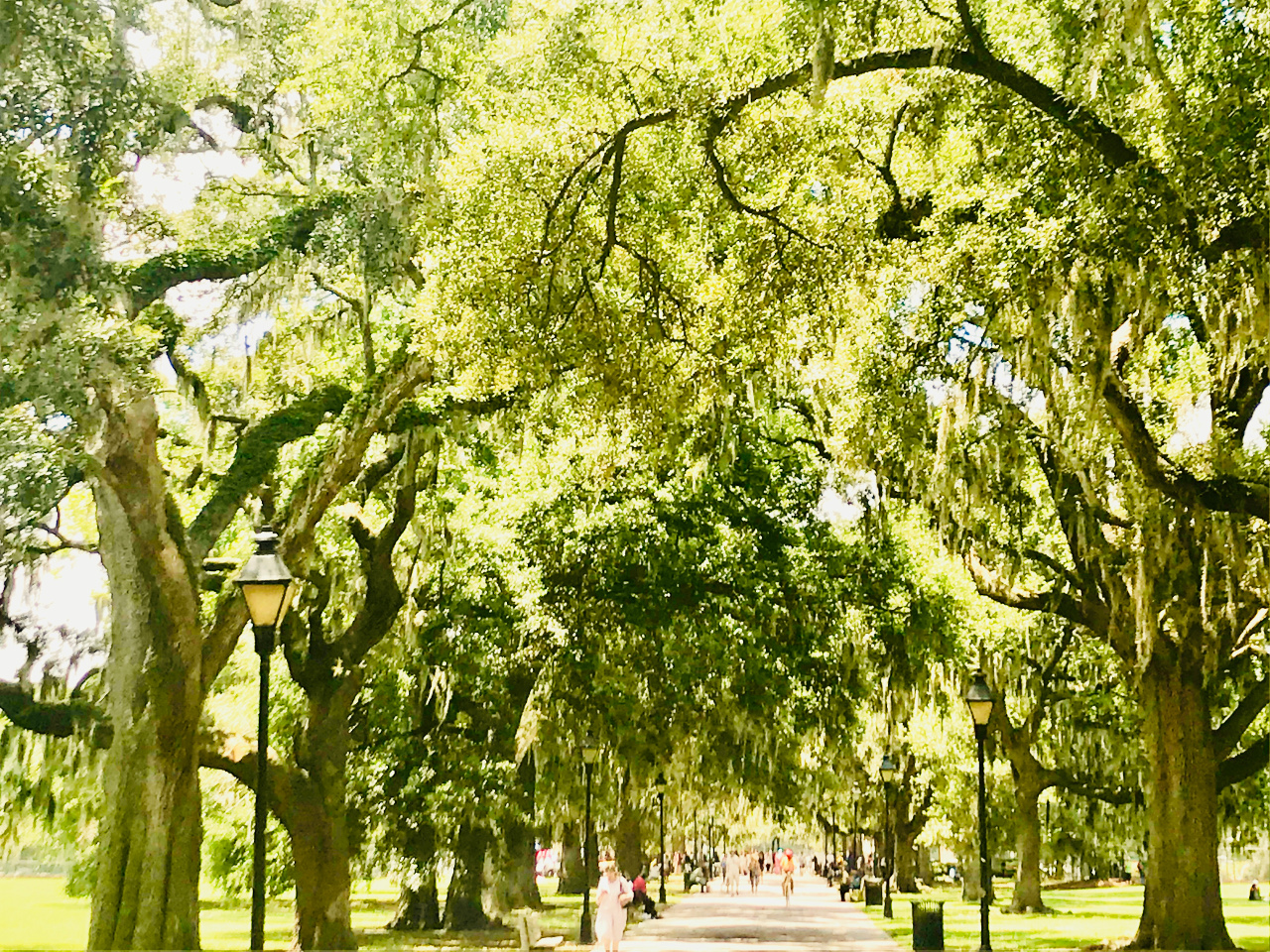 Discover Savannah off the beaten path - unique things to do in Savannah and near the city, including Tybee Island. #savannah #georgia #usa #savannahguide