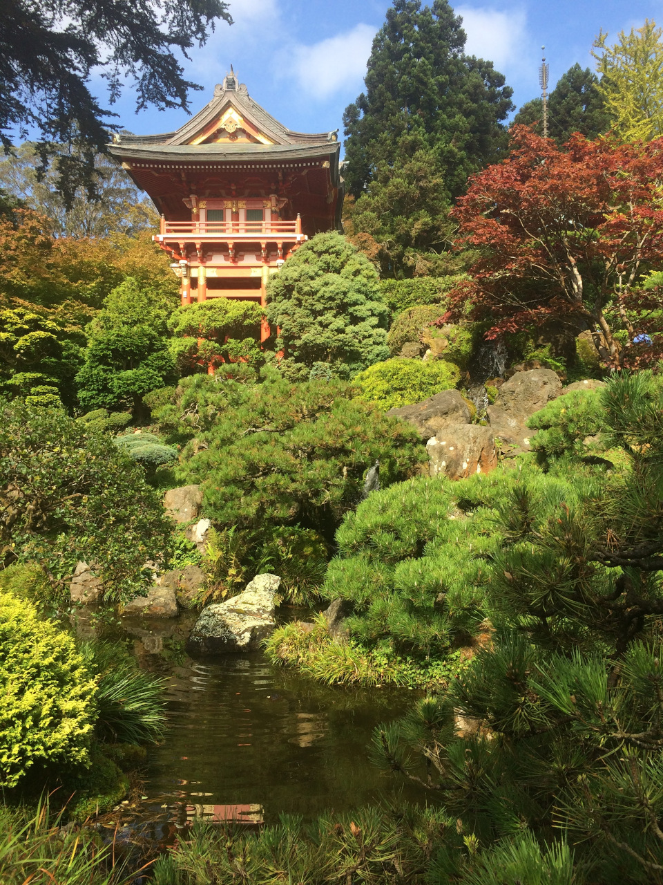 The Japanese Garden - Golden Gate Park, San Francisco. Use this locals'guide to San Francisco to create your San Francisco bucket list. #sanfrancisco #sf #usa #travel