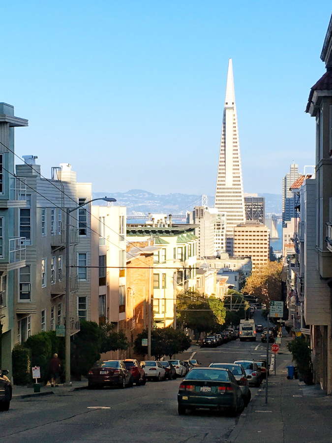 San Francisco cityscape. What should I do in San Francisco - recommendations from a local #sanfrancisco #sf #usa #travel