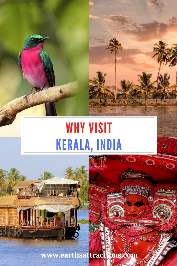 Why visit Kerala India and the best things to do in Kerala #kerala #india #asia #travel #HumanByNature