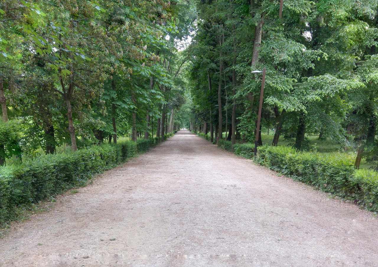Parco Cascine, Florence. Offbeat things to do in Florence, as well as the best things to do in Florence