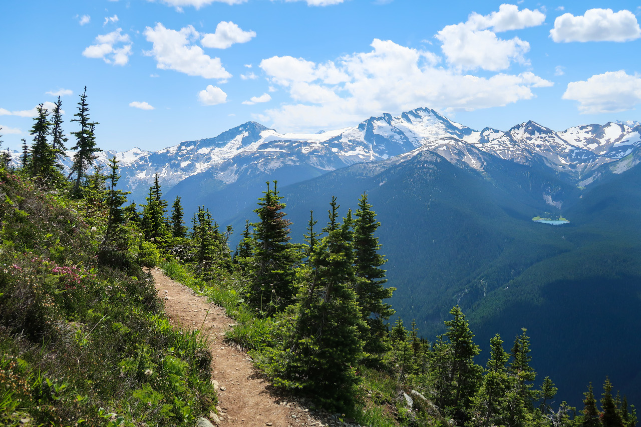 The High-Note Trail is one of the best activities in Whistler. Discover what to do in Whistler, BC, Canada from this local's travel guide to Whistler.