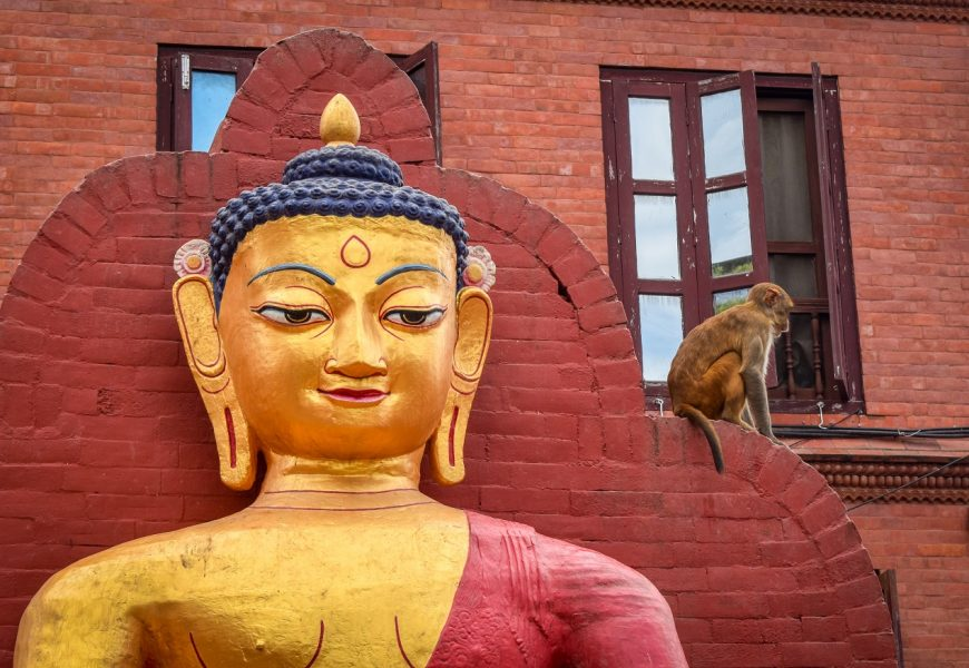 Things to do in Kathmandu: Your complete Kathmandu City Guide