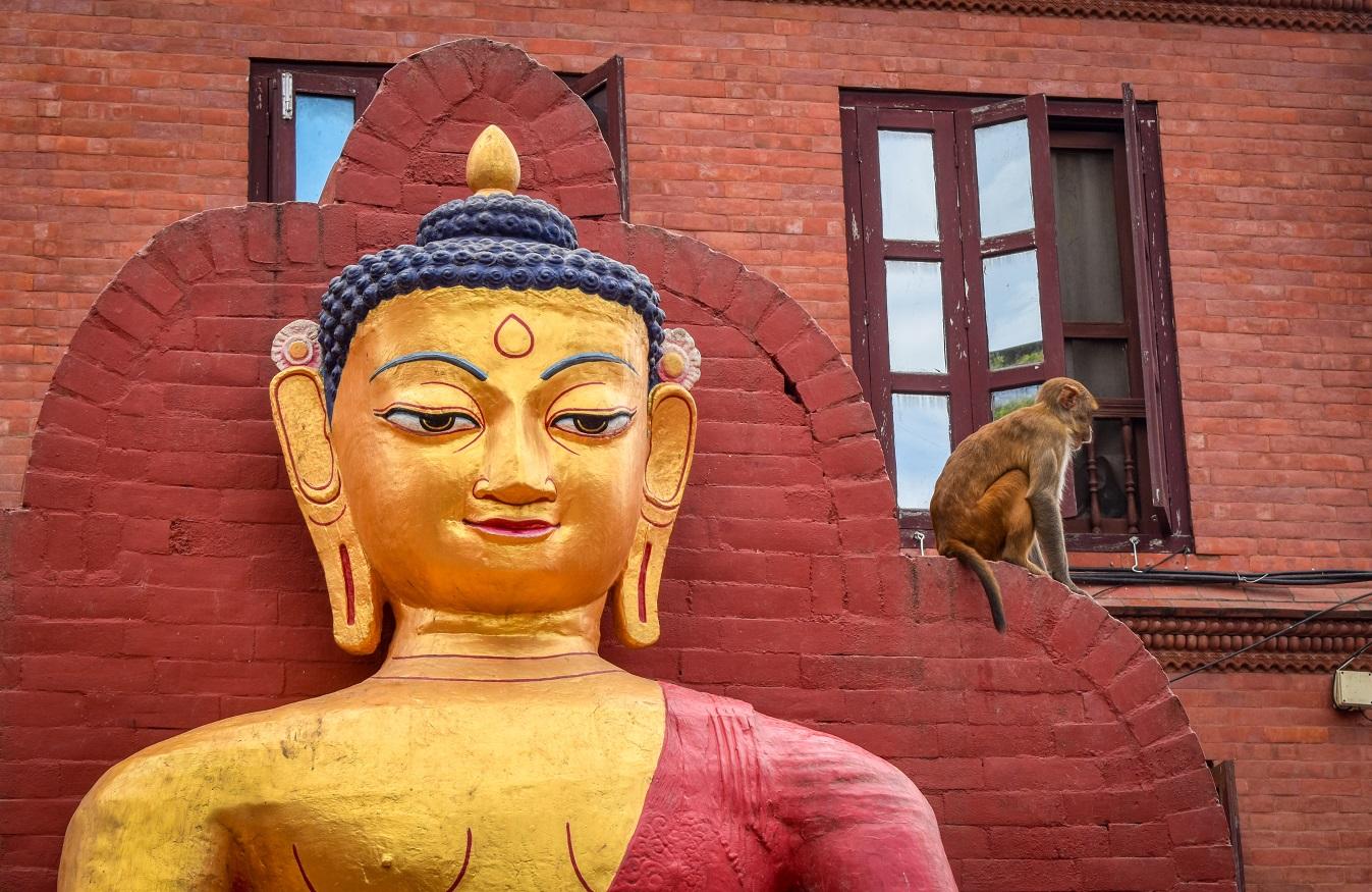 Храм Сваямбунатх / Храм обезьян является одной из достопримечательностей Катманду. Откройте для себя 10+ удивительных вещей, которые можно сделать в Катманду из этой статьи, и спланируйте свой маршрут в Катманду с этими рекомендациями! Чем заняться в Катманду Чем заняться в Катманду? monkey temple swayambhunath in kathmandu