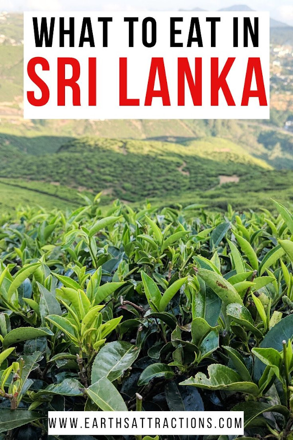 Wondering what to eat in Sri Lanka? Discover the best Sri Lankan foods you should try. These are the best Sri Lankan dishes from the Sri Lankan cuisine! #earthsattractions #srilanka #srilankafood #food #asiafood #srilankadishes #srilankacuisine #asia #travel