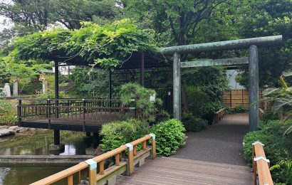 Off The Beaten Path Things To Do In Tokyo You Won't Want To Miss