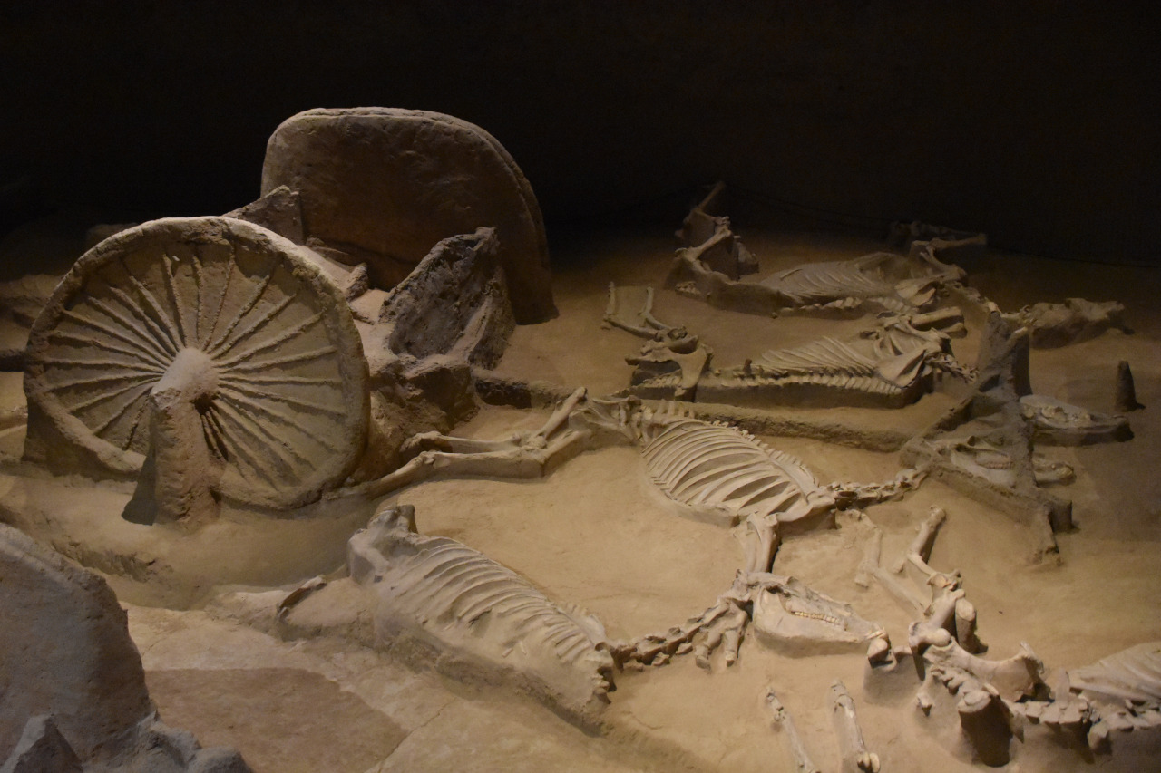 The Horse & Chariot Museum is one of the Luoyang attractions you should include on your Luoyang itinerary