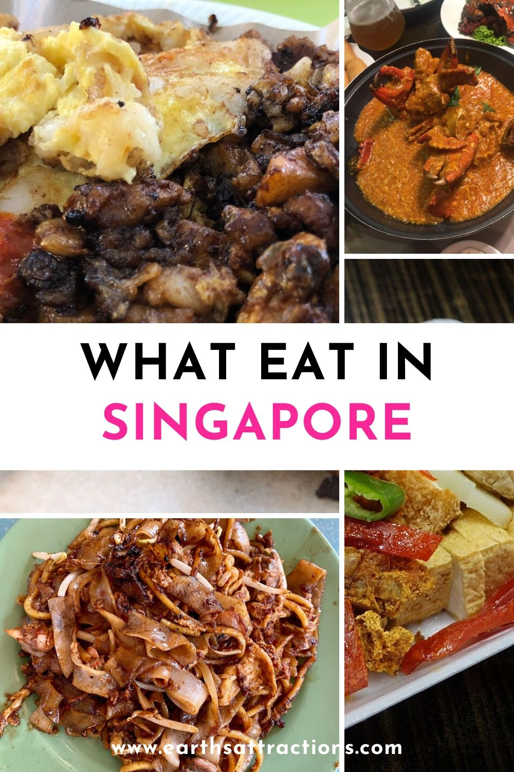 Food in Singapore: 8 tasty Singaporean dishes to try. From Hainanese Chicken Rice to Satay, from Chili Crab to carrot cake and beyond, discover what to eat in Singapore. #singapore #asia #singaporedishes #food #singaporefood #singaporeeat