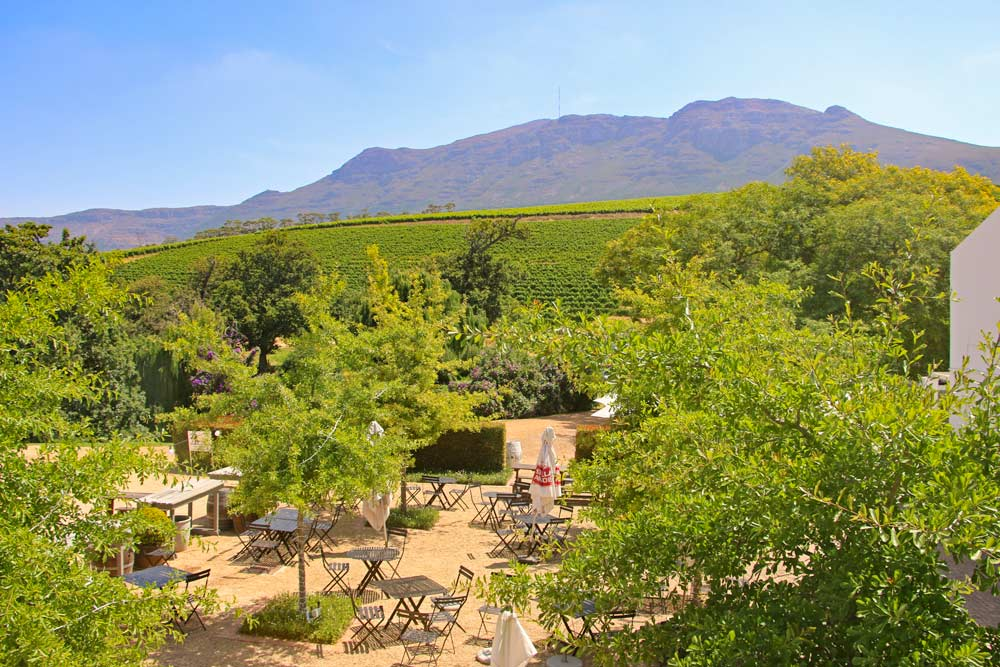 Check out Groot Constantia wine estate on your 2 days in Cape Town trip