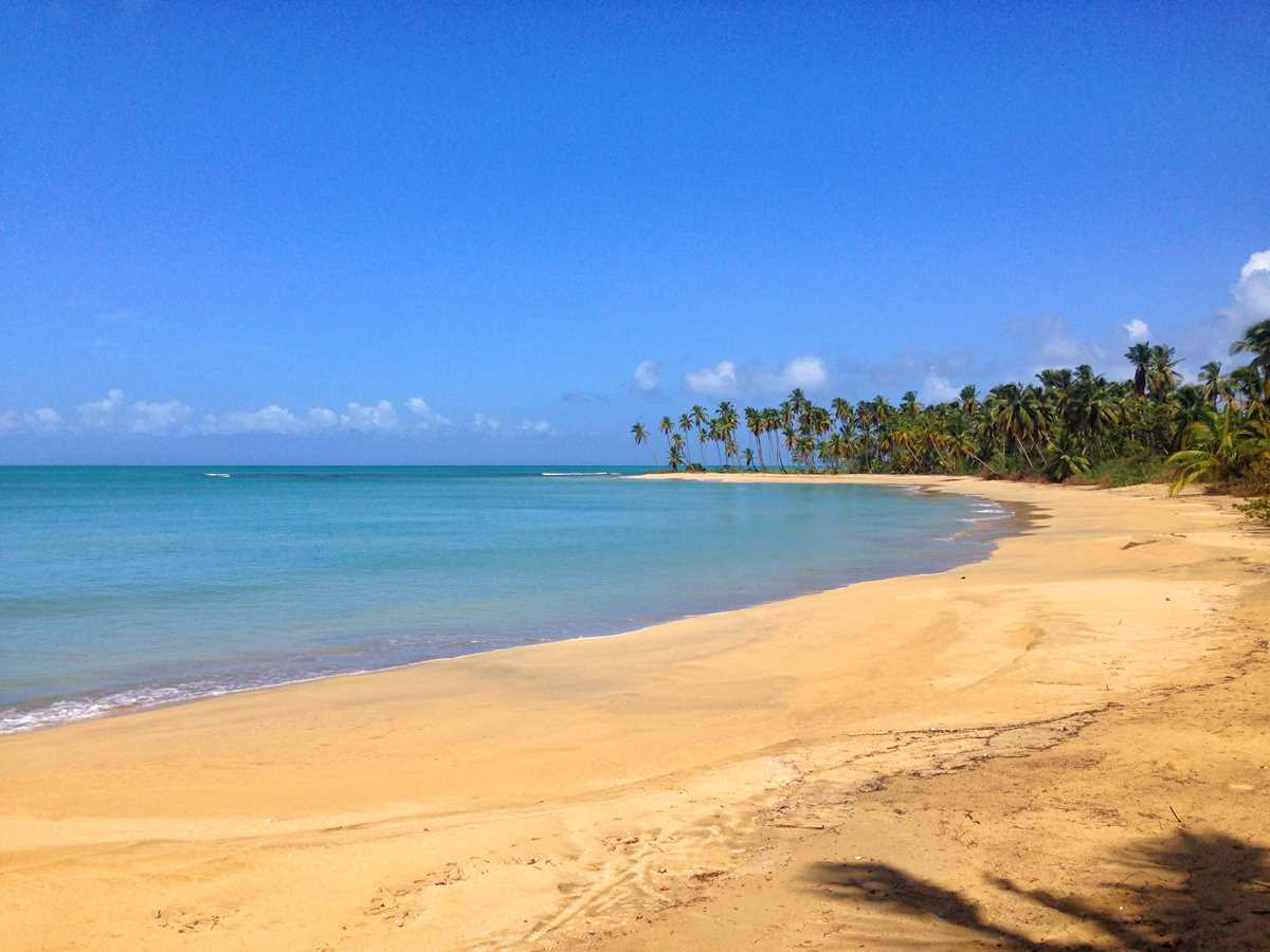 Playa Esmeralda is a must-visit in the Dominican Republic and you should include it on your to/from Punta Cana 3-day itinerary
