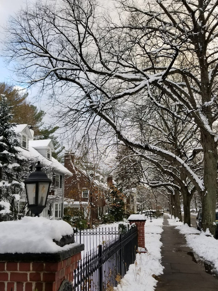 Chestnut Hill - Boston snow: discover the best time to visit Boston, great restaurants in Boston and Boston travel tips from this Boston city guide