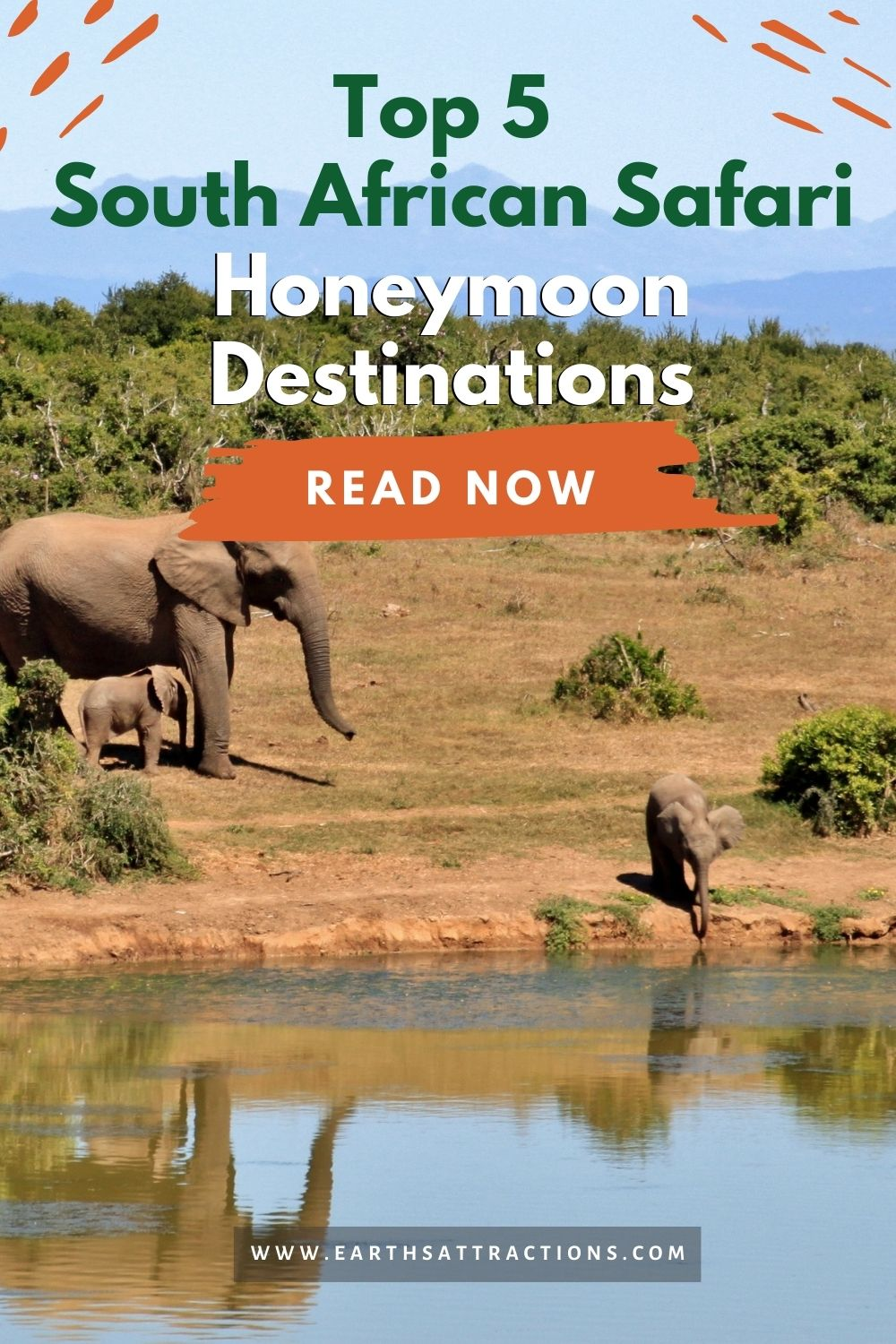 Top 5 South African Safari Honeymoon Destinations. Discover the best South African safari honeymoon destinations for an unforgettable experience! #safari #southafrica #honeymoon #southafricasafari #southafricahoneymoon #southafricadestinations